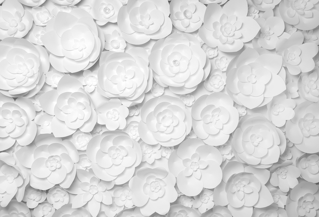 White paper flowers to lead the page of adroyt's white papers